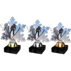 Akrylátová trofej ACTS0001M9