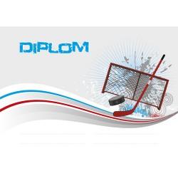 Diplom DP0029