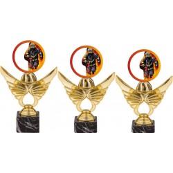 Trofej hasiči PCA0002M13